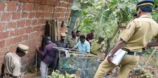 आरएसएस (RSS) तालुका कार्यवाहक के घर पर देसी बम फटा, दो बच्चे घायल-two-children-injured-in-crude-bomb-explosion-at-rss-worker-house-in-kerala-IndiNews